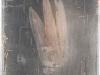 Franck David - Négatif hirondelle - Technique mixte sur rhodoïd