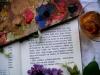 Marcos Rodrigo - Ce qui donne envie de peindre (Photographie)