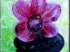Valérie Reboisson - Orchidée